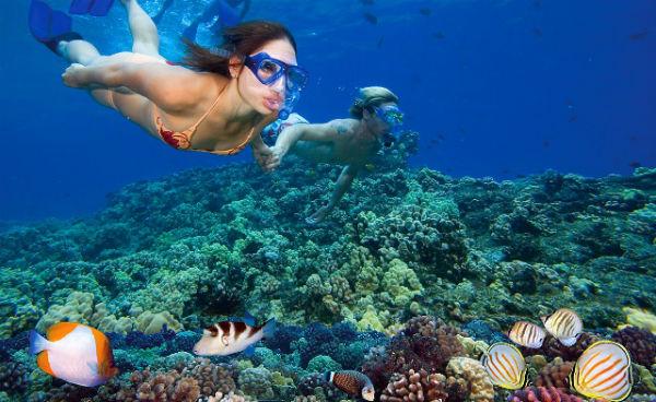 Mua vé máy bay đi Côn Đảo - Lặn ngắm san hô