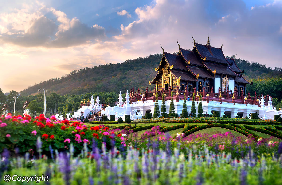 Vé máy bay Vietnam Airlines - Chiang Mai