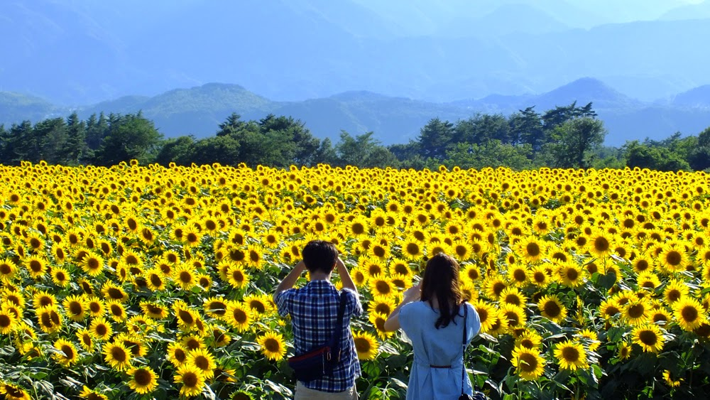 Những trải nghiệm không thể bỏ qua tại Nghệ An