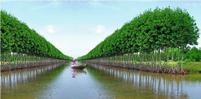 Vé máy bay Vietnam Airlines - Cảnh đẹp Cà Mau