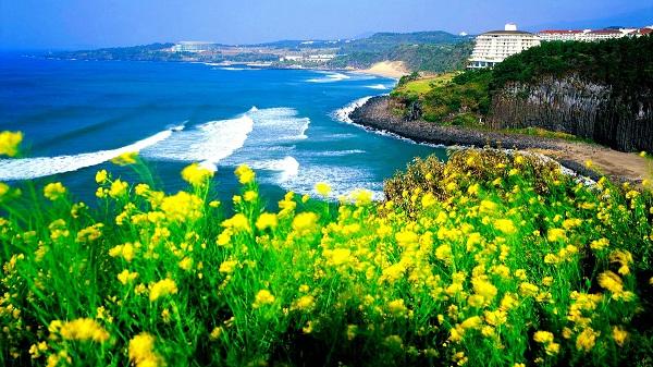 Du lịch Hàn Quốc ngắm những điểm đến đẹp như tranh