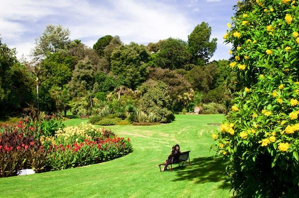 Thăm quan vườn thực vật Royal Botanic Melbourne