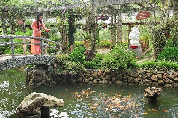 Vé máy bay đi Quy Nhơn - Thăm vườn thơ Hàn Mặc Tử