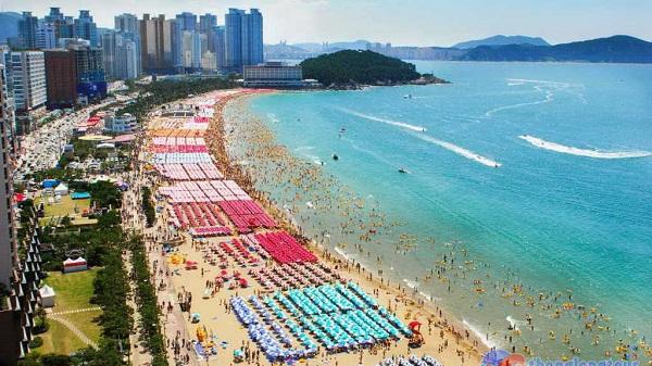 5 lí do khiến bạn muốn tới Busan ngay bây giờ
