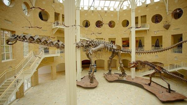 Bảo tàng Lịch sử Tự nhiên Fernbank