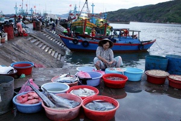 Chợ cá Hàm Tử