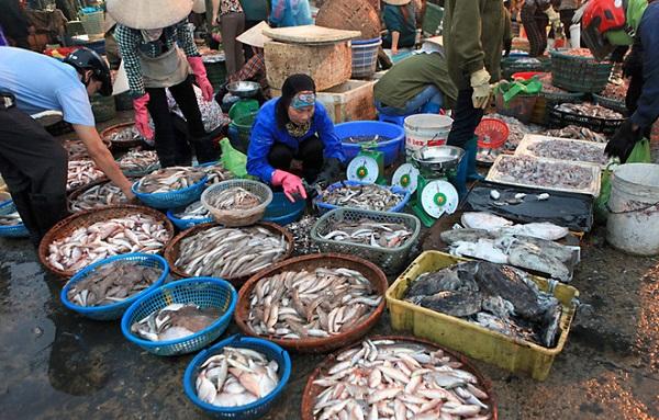 Chợ cá Hàm Tử1