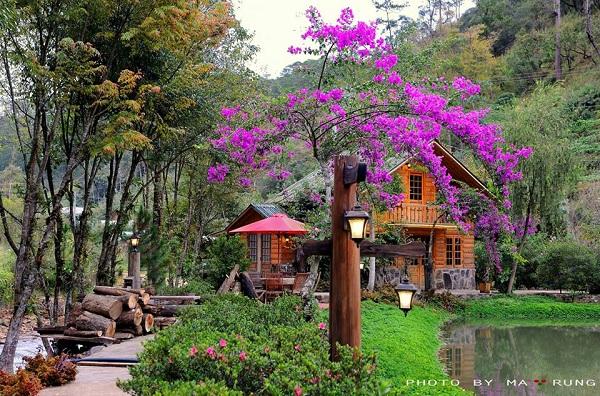Top 5 địa điểm chụp ảnh miễn phí cực chất ở Đà Lạt