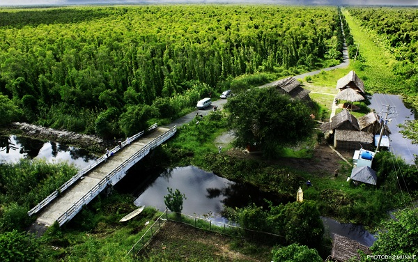 Vẻ đẹp vùng đất mũi Cà Mau