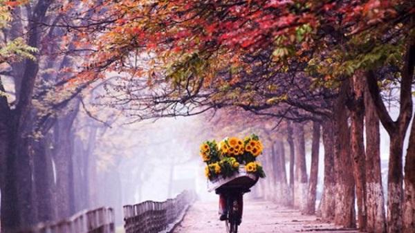 Vé máy bay đi Hà Nội - Vẻ đẹp của những con đường Hà Nội