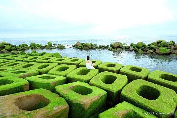 Vẻ đẹp biển Tuy Hòa