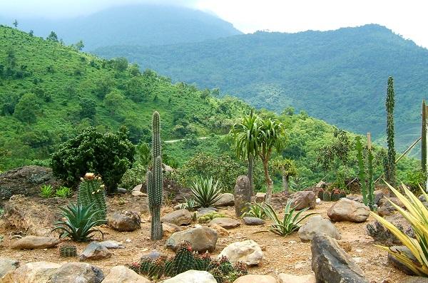 Vườn quốc gia Ba Vì, Hà Nội
