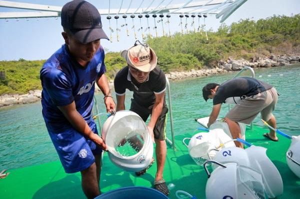 Vé máy bay đi Nha Trang - Chiếc mũ cung cấp khí oxy để du khách lặn xuống đáy biển