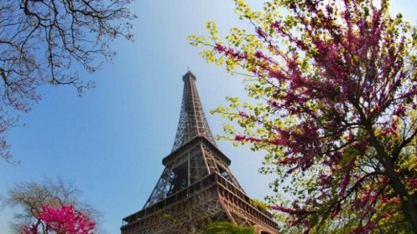 Mùa Xuân của Paris