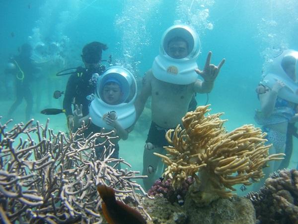 Vé máy bay đi Nha Trang - Trải nghiệm đi dạo ngắm cá, san hô dưới đấy biển