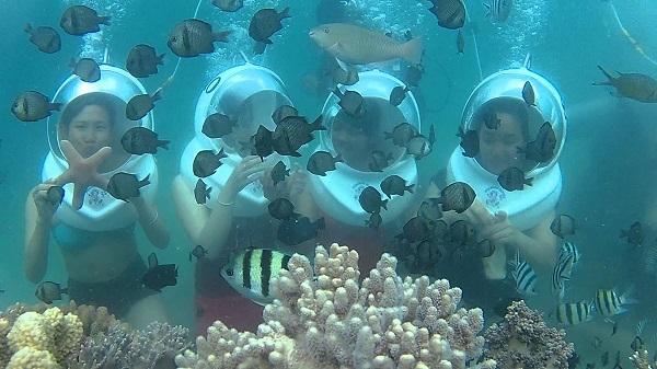 Vé máy bay đi Nha Trang - Những tấm hình độc đáo ngay dưới đáy biển
