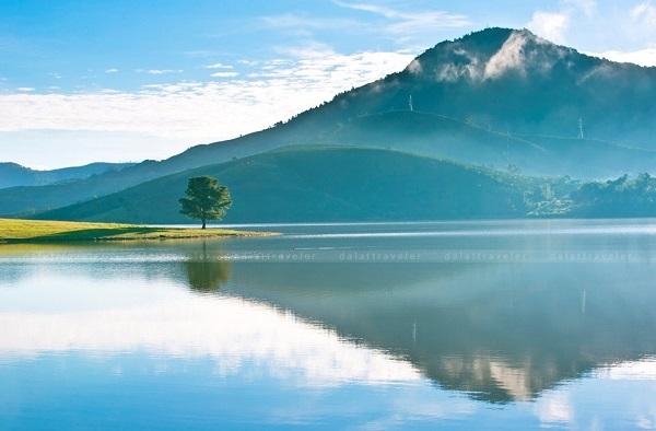 """Vé máy bay đi Đà Lạt - Điểm cấm trại thu hút: """"Cây cô đơn"""" hồ Suối Vàng"""