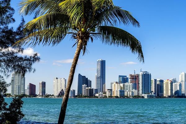 Mua vé máy bay đi Miami giá rẻ tháng 12