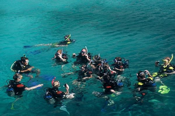 Vé máy bay đi Nha Trang - Lặn biển ngắm san hô ở Hòn Mun