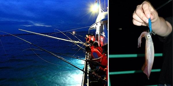 Vé máy bay đi Phú Quốc - Trải nghiệm câu mực đêm