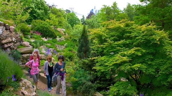 Vườn thực vật (Palmengarten)