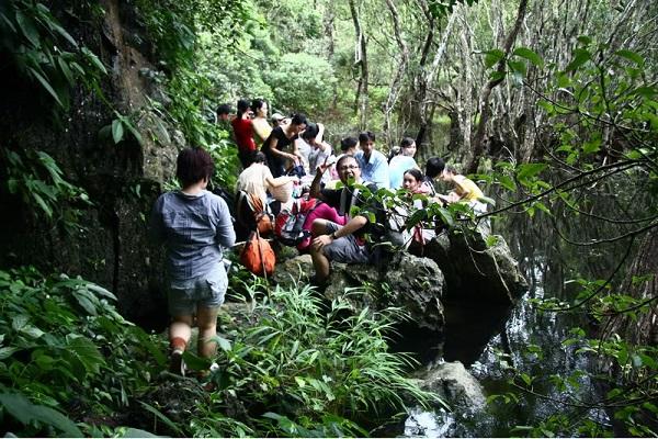 Vé máy bay đi Hải Phòng - Khám phá Vườn quốc gia Cát Bà