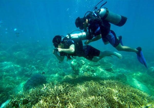Vé máy bay đi Hải Phòng - Trải nghiệm lặn biển ở Cát Bà