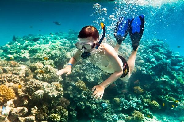 Những điều thú vị, hấp dẫn không nên bỏ qua khi du lịch Côn Đảo