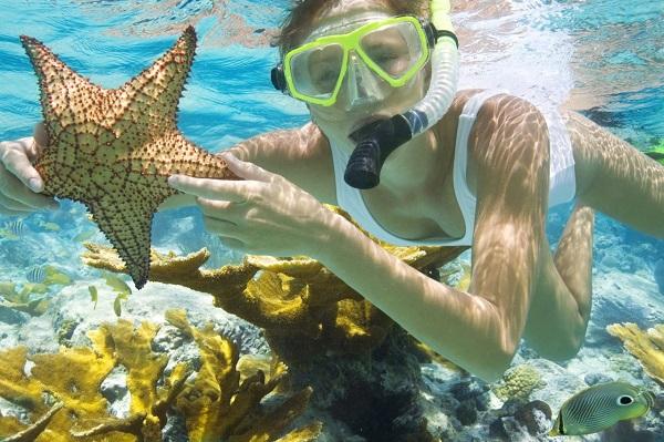 Vé máy bay đi Côn Đảo - Lặn biển ngắm san hô