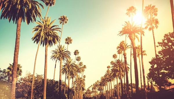 Những cửa hàng tâm linh tốt nhất tại Los Angeles