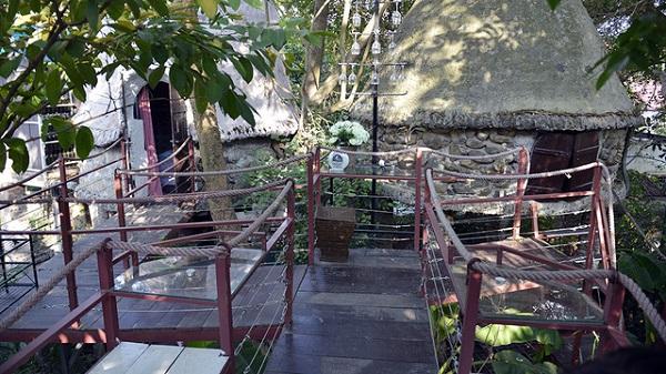 """Không ngờ ngay tại Hà Nội lại mọc lên ngôi nhà """"vắt vẻo trên cây"""" đẹp đến vậy"""