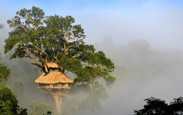 Khu bảo tồn thiên nhiên Bokeo