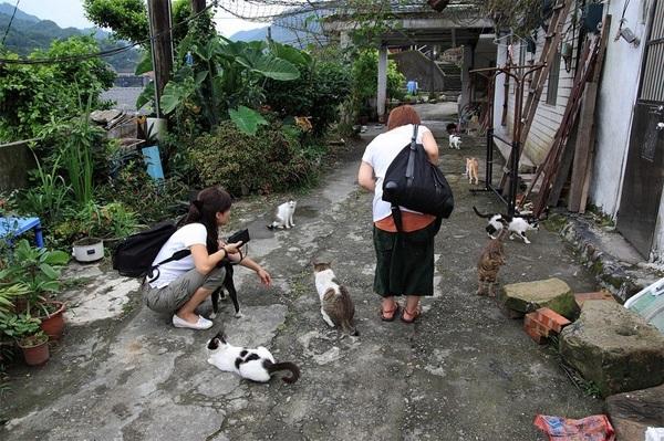 Vẻ đẹp độc đáo của Đài Loan qua 4 ngôi làng cực kì thú vị