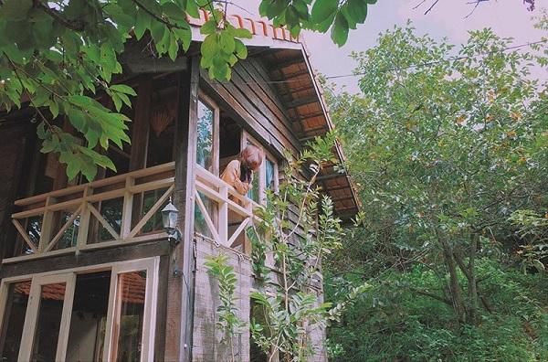 Vé máy bay đi Đà Lạt - Vẻ đẹp của ngôi nhà gỗ xanh cao nguyên