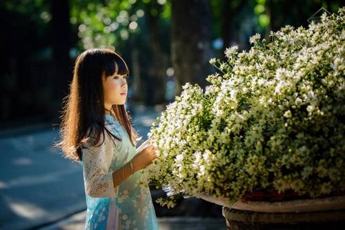 Vé máy bay đi Hà Nội - Mùa hoa của yêu thương