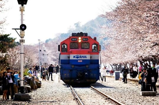 Vé máy bay đi Hàn Quốc - Phương tiện di chuyển du lịch Hàn