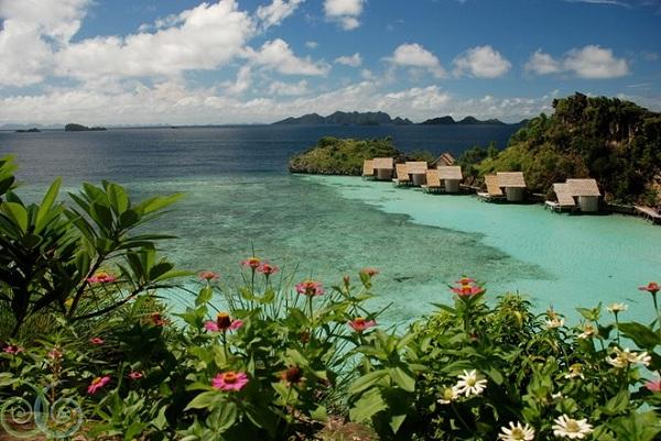 Vé máy bay đi Indonesia - Quần đảo Raja Ampat đa dạng