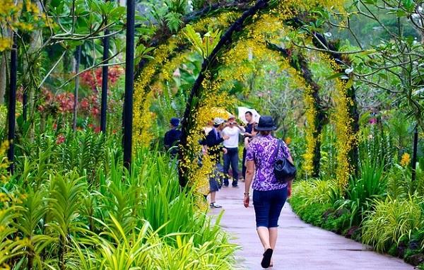 Vé máy bay đi Singapore - Vườn Bách thảo Singapore
