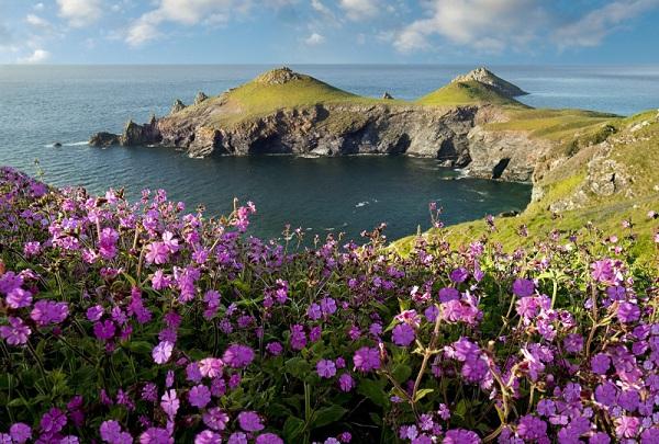 Vé máy bay đi Anh - Khám phá Cornwall quyến rũ