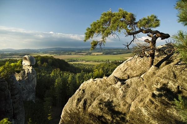 Mua vé máy bay giá rẻ đi Cộng Hòa Séc khám phá Thiên đường Bohemian