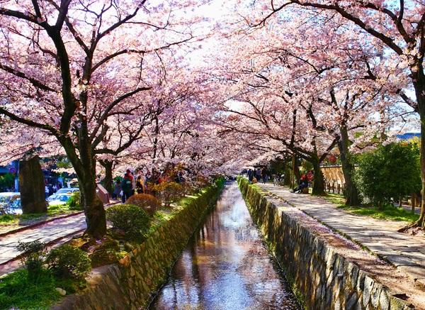 Vé máy bay đi Nhật Bản - Vẻ đẹp đất nước Nhật Bản
