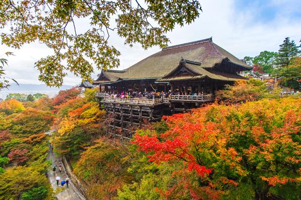 Cùng vé máy bay đi Nhật Bản khám phá vẻ đẹp mùa thu