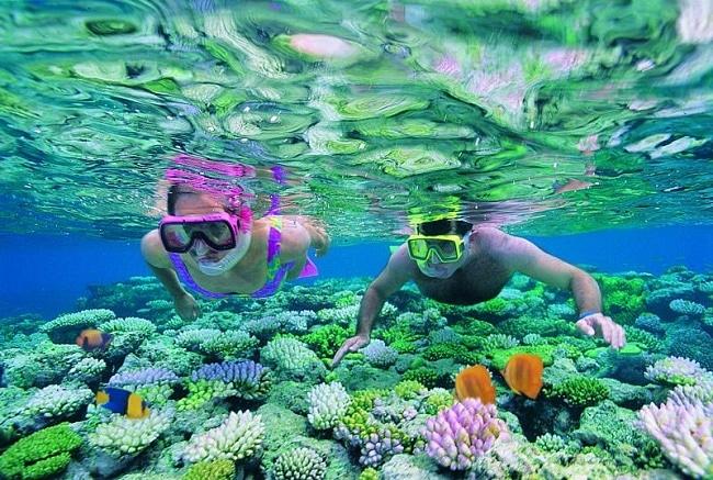 Rạn san hô Great Barrier Reef