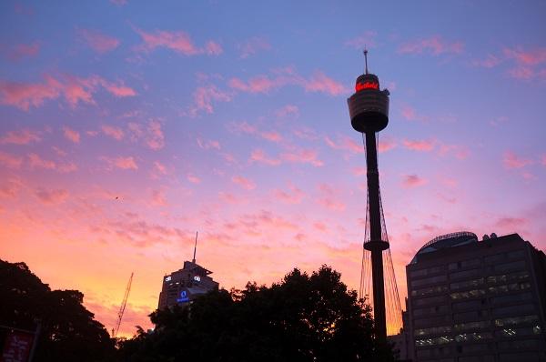 Vé máy bay đi Úc - Ngắm toàn cảnh thị trấn trên Sydney Tower