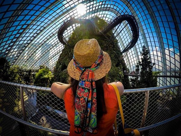 Mua vé máy bay đi Jakarta khám phá Công viên Taman Safari