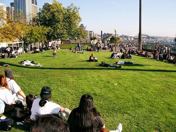 Đặt vé máy bay đi Seattle khám phá công viên Victor Steinbrueck