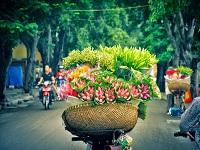 Vé Máy Bay Đà Nẵng - Hà Nội